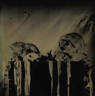 box-of-skulls