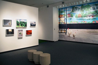 Peach Blossom Spring Installation View